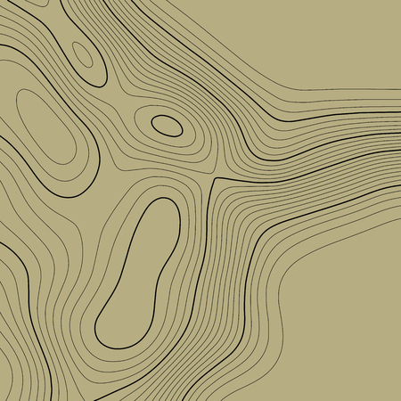 Topographic map background in brown colors. Grid map. Vector illustration .