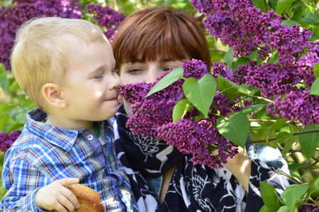 sniffing: boy in the arms of my mother sniffing lilacs