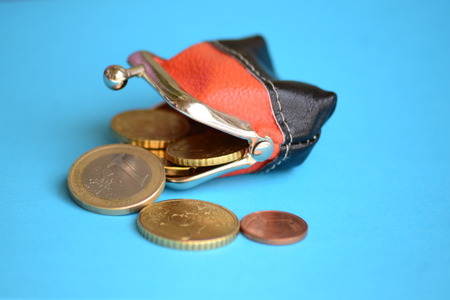 coin purses: purse and coins