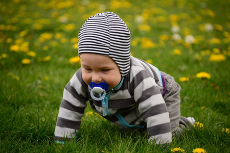 blue grey coat: baby with a pacifier is crawling through the grass