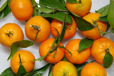 clementines: Clementines ripe with green leaves Stock Photo