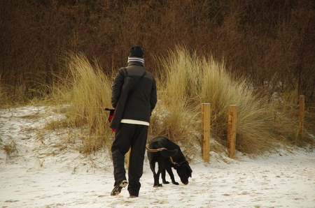 walking pole: man walking with a black dog in the snow