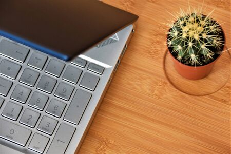 Cactus and laptop on a wooden table
