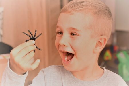 Boy with a black spider toy in his hand