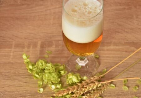 Beer with foam, hop cones and a sprig of wheat