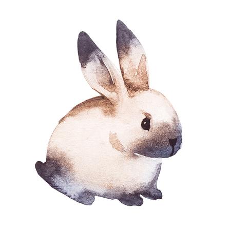 Cute brown rabbit. Watercolor hand drawing Illustration