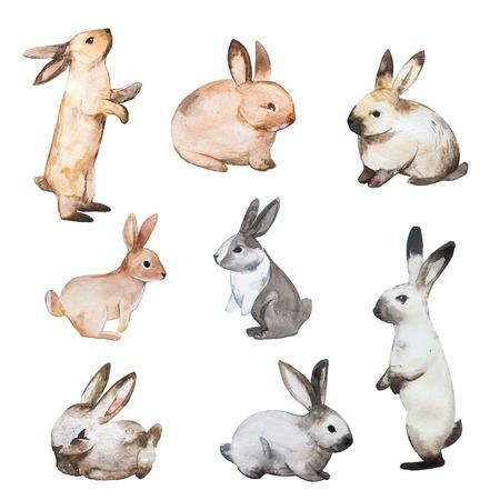 Ensemble de lapins de Pâques. Hand drawn esquisse et aquarelle illustrations.