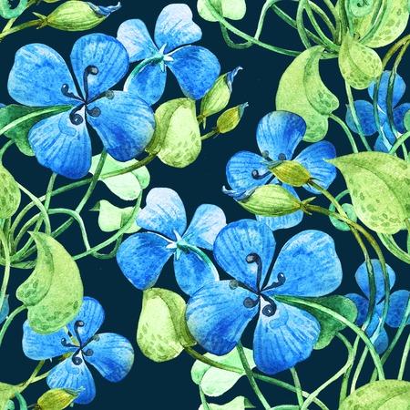 transparently: Blue flower. Watercolor floral pattern background Decorative element