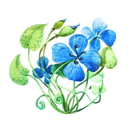 transparently: Blue flower. Watercolor floral illustration. Floral decorative element.