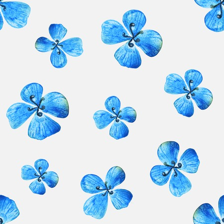transparently: Blue flower on a white background. Watercolor floral pattern