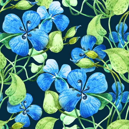transparently: Blue flower. Watercolor floral  seamless pattern background