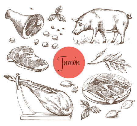 Jamon set. Black Iberian Pig, Jamon, Meat, Beef, spices for meat. Vintage engraving style. Can be used for menu illustration, label or sticker image. Isolated