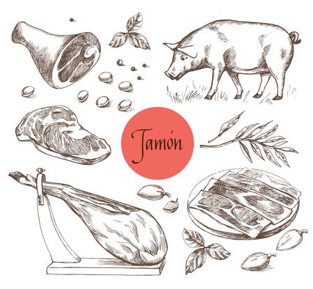 Ensemble Jamon. Porc ibérique noir, Jamon, Viande, Boeuf, épices pour la viande. Style de gravure vintage. Peut être utilisé pour l'illustration du menu, l'étiquette ou l'image d'autocollant. Isolé Banque d'images - 54755425