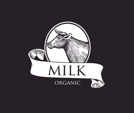 cameo: Cow in a Cameo with Ribbons. Cow Vector Illustration. Cow illustration in Vintage Engraving Style. Grunge label for milk. Sticker depicting Cow.