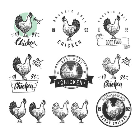 Chicken product logotypes set. Hen meat and eggs vintage produce elements. Badges and design elements for the chicken manufacturing. Vector illustration Imagens - 67177468