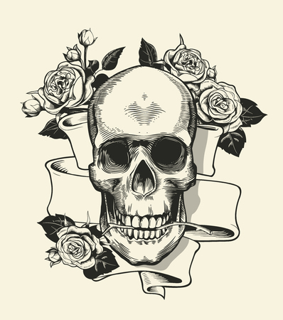 b04e196a027fb Human skull with rose grasped with jaws and ribbon on background. Symbol of  death and