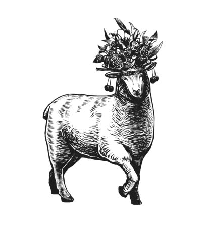 Illustration of the Sheep with a bouquet of berries, fruits and leaves on her head. Lamb feminine and elegant. Engraved vintage style illustration of the sheep with beautiful headdress. Can be used for Poster, Package, Logo Isolated on white background Ilustracja