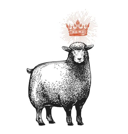 Vector Stylized Illustration of the Sheep with the crown over her head and surprised fasial expression. Vector illustration of the Queen Sheep in graphic style Isolated on a white background. Ilustracja
