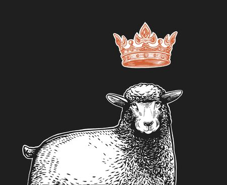 Vector Stylized Close up Illustration of the Queen Sheep with a crown over the head and funny surprised facial expression. Cartoon illustration of the Queen Sheep in graphic style on a white background.