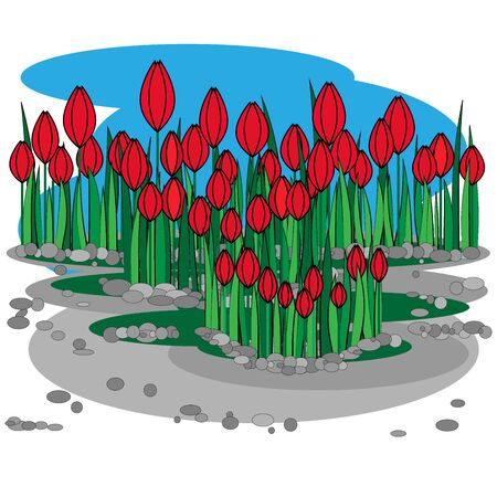 Glade of red tulips on a blue and gray background
