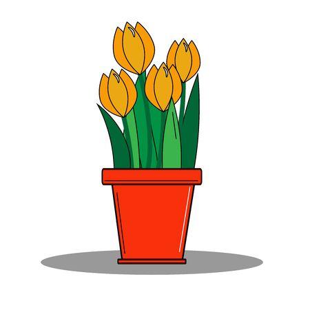 Orange tulips in a red flower pot Çizim
