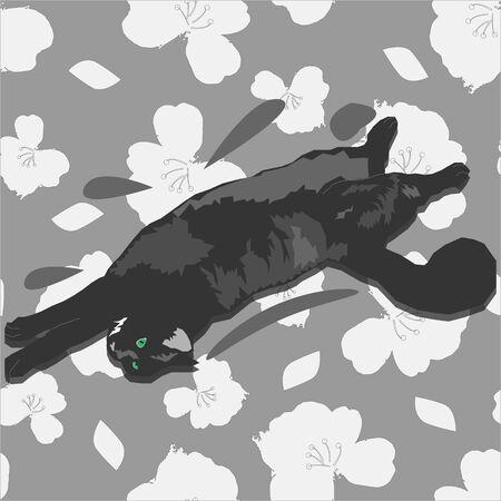 dark gray fluffy cat lies on a blanket