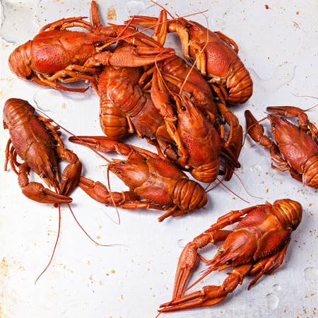 fluvial: Boiled red lobsters on textured background Stock Photo