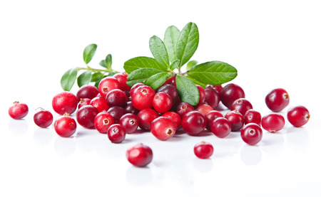 cranberry: Ripe cranberries with leaves on white background