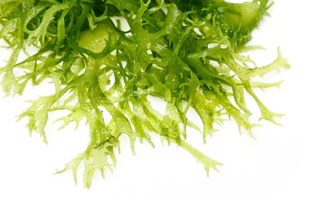 Edible seaweed salad on white background