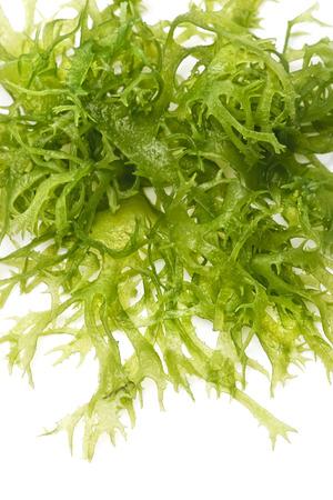 흰색 배경 근접 식용 해초 샐러드 스톡 콘텐츠 - 29583735