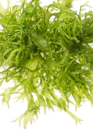Edible seaweed salad on white background Close-up photo