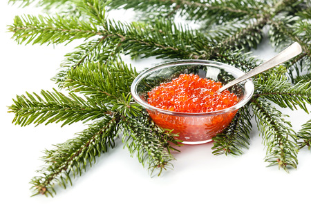 Salmon red caviar in glass bowl on green Fir Christmas branch background