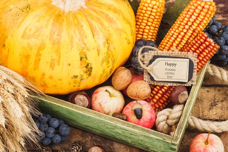 Thanksgiving day: Tray with pumpkin and different ripe vegetables inside Stock Photo