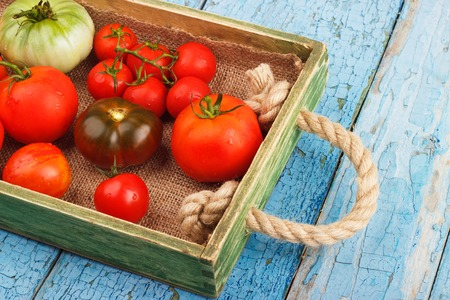 sorts: Set of different sorts of ripe tomatoes in the wooden tray, light background