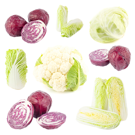 Set from different types of cabbages, isolated on white