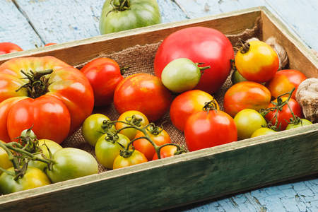sorts: Set of different sorts of ripe tomatoes in the wooden tray, soft focus background Stock Photo