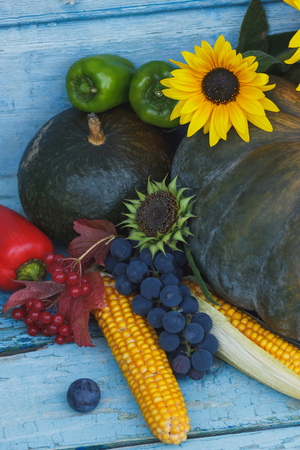 Pumpkin, corn and different ripe vegetables and fruits, wooden background