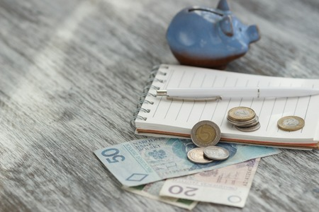 Polish zloty, notebook and piggy bank on the wooden background, soft focus background