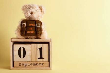 Brown teddy bear with school backpack and decoratibe wooden calendar, saturated yellow background Reklamní fotografie