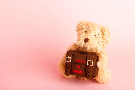 Brown teddy bear with school backpack, saturated pink background