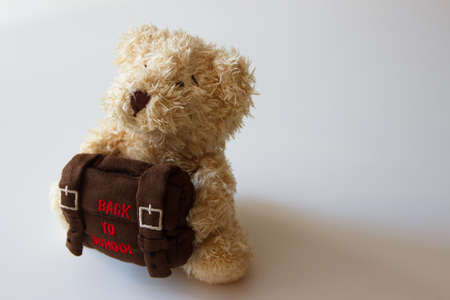 Brown teddy bear with school backpack, light gray background