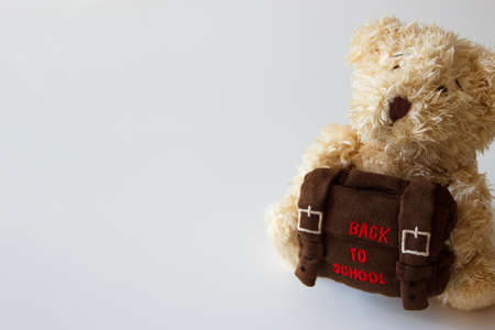 Brown teddy bear with school backpack, gray background