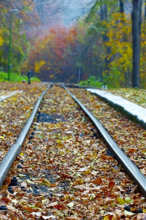 Train tracks leading off into the distance. Stock Photo - 17780831
