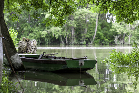 green boat: an old green boat between trees on the river