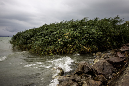 windy: view of the lake Balaton on a windy day Stock Photo