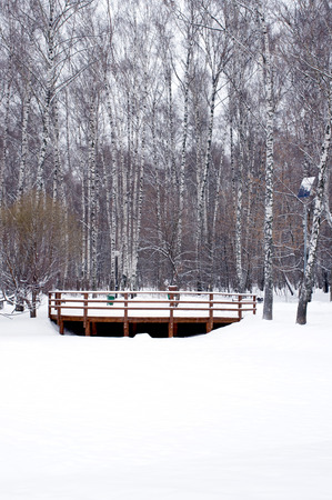 wooden railings: View to wooden railings from frozen river with a lot of snow vertical