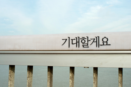 Mapo bridge in Seoul with word Ill be waiting (expecting, hoping) written on hand rail