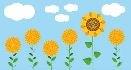 A flower field of yellow flowers, sunflowers and Golden balls against a blue sky and white clouds. Illustration