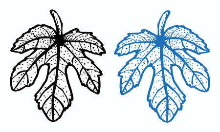 Outline of a fig leaf with dots in black and blue Illustration