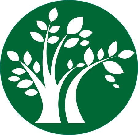 genealogical: �rbol verde icono de ronda